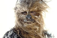 Chewbacca on Hoth